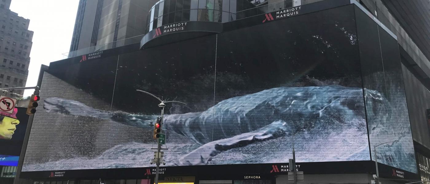 WHALE on the Silvercast Big Kahuna screen