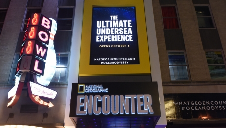 Entertainment Times Square Nyc